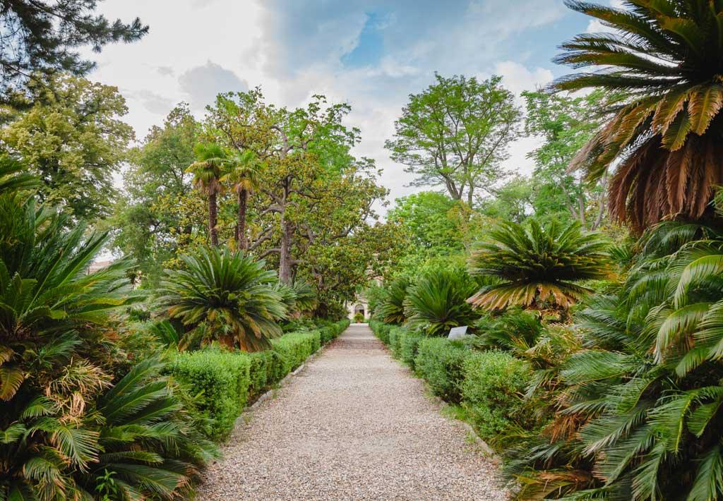 Orto botanico di Pisa botanical garden in Pisa Tuscany Italy