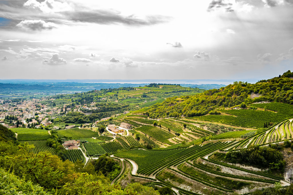 Beautiful panoramic view on Valpolicella from San Giorgioin in the province of Verona - Italy