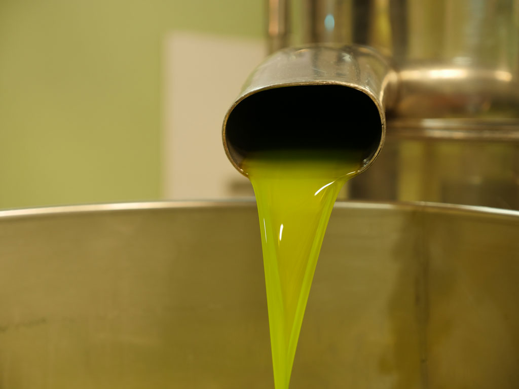 Tuscany Chianti Olive Oil