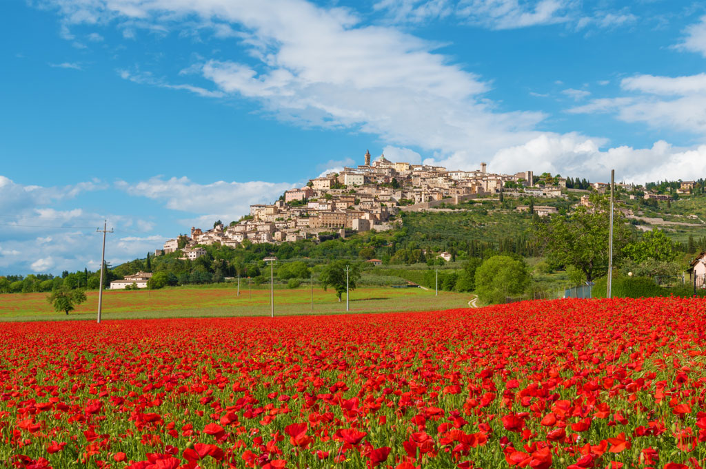Trevi (Italy) - The awesome medieval town in Umbria region, central Italy, during the spring and flowering of poppies.