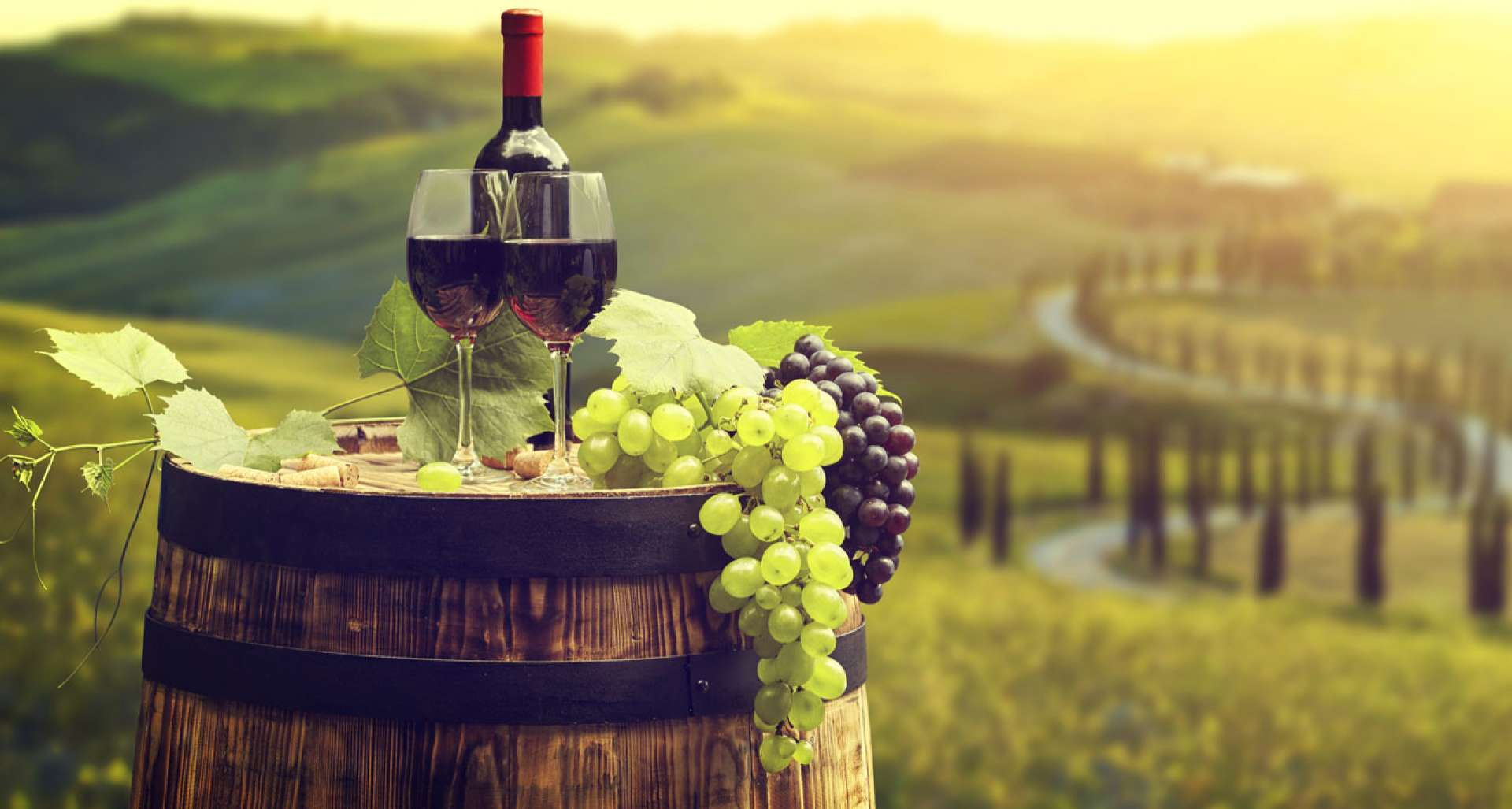 5 niche Tuscan wines & how to pair them
