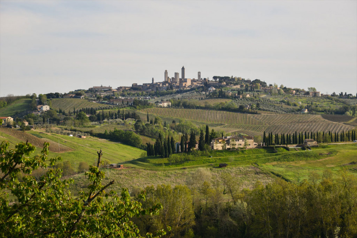 Views of endless rolling landscapes and San Gimignano at Rosso Fiorentino