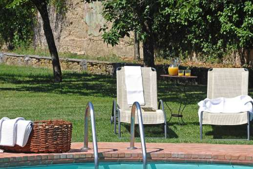 Villa di Bonorlo - The pool , is set on a lower enclosed garden with lemon trees.