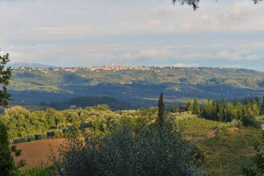 Podere Santa Giulia  - A sweeping view over the Tuscan/Umbrian countryside leads the eye to the hill top town of Citta' della Pieve.