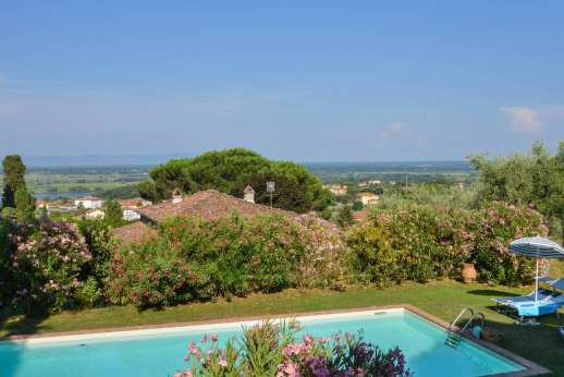 Villa Poggio ai Cipressi - The private gated swimming pool, is set on a lower terrace with olive trees.