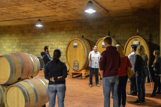 Chianti Wine & Cheese - Group winery tour.