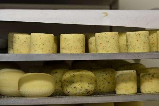 Chianti Wine & Cheese - Italian cheese.