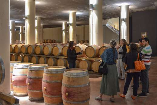 Chianti Wine Tour - A group of tourists on a tour of the wine maker's barrels.