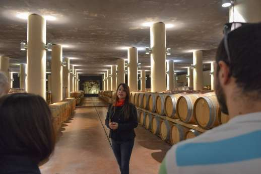 Chianti Wine Tour - A tour guide talks to her group about the barrels of wine in the wine cellar.