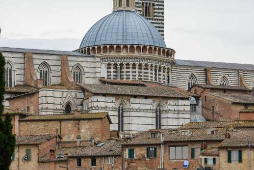 Siena Beyond The Palio - Back of Siena Cathedral