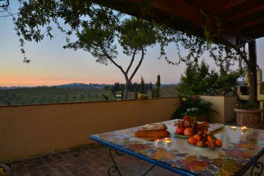 Colli Fiorentini - Relax have a dinner prepared for you,