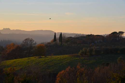 Colli Fiorentini - Colli Fiorentini a beautiful and relaxing villa