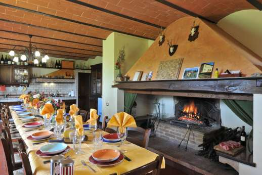 Il Renaccio (x 20 people) with Staff and Cook - Air conditioned kitchen dining room with a massive fireplace.