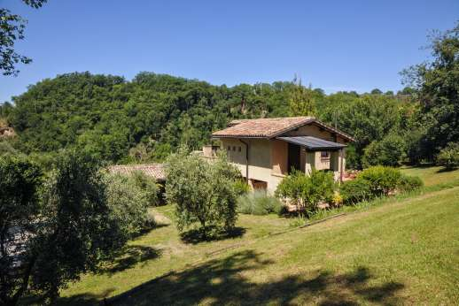 L'Olmo (x 2 people) with Staff and Cook - Gardens around the villa