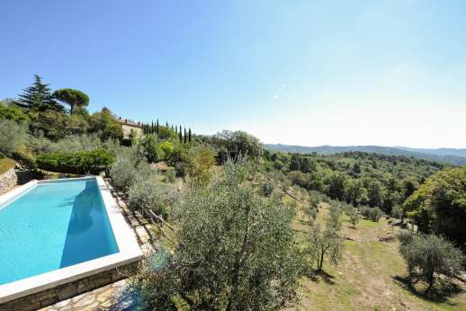 La Casa di Montegrossi - The olive grove below the pool