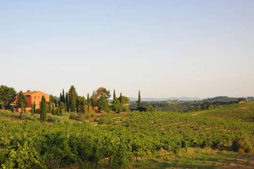 La Casa Rossa - This area is full of interesting villages and sights both Florence and Siena are quickly reached.