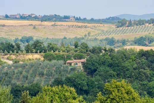 La Magione - La Magione surrounded by olive groves.
