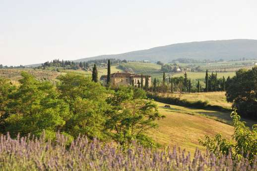 Rosa Dei Venti - There are scores of small towns and wineries to explore in the immediate area.