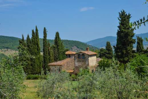 Val di Castello - The villa is surrounded by a landscaped garden with well kept lawns, cypress trees and olive groves.