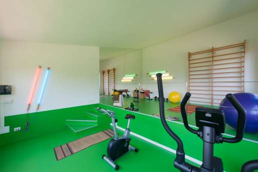 Villa Caprolo - Amazing two level gym