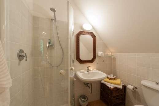 Villa di Pile - Bathroom with shower.