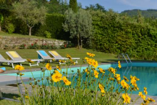 Villa di Pile - The very large landscaped garden with flower beds, various fruit trees and well maintained lawns sweep down to the pool.