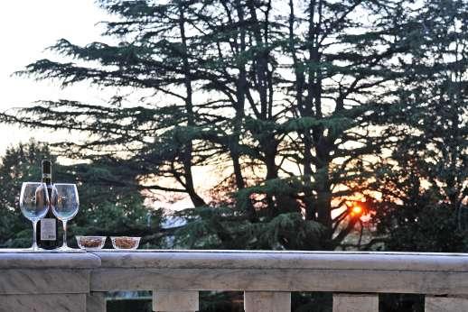Villa Lungomonte - The gardens shaded by umbrella pines.
