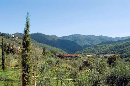 Villa La Nocciolina Casamora - Views of the Pratomagno Mountains.