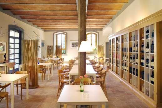Villa Le Magnolie Casamora - The enoteca.