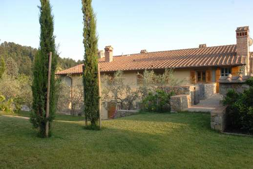 I Meli Casamora - The garden is dotted with Cypress, fruit and olive tress.