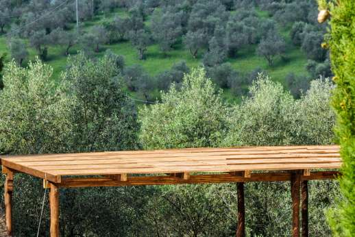 Gugliaie - Outside seating with olive grove views