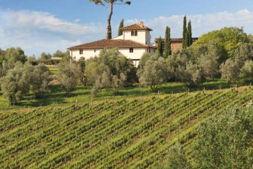 "Gugliaie - Gugliaie is a beautiful, restored farmhouse set at the end of a short drive on a hill top amongst an olive grove of the ""Villa Le Corti estate"", 246 hectares, overlooking Vigneto di Gugliaie one of the estates most famous vineyard."