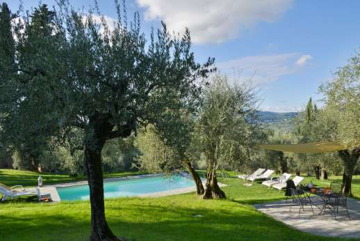 Villa Olmetto - The olive grove garden leading down to the pool