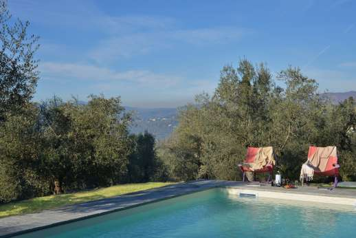 Villa Olmetto - The pool lies amongst olive trees with stunning views of Florence.