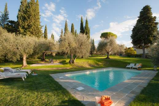 Villa Olmetto - The private swimming pool, 4 x 8 meters/13 x 26 feet, lies amongst olive trees with stunning views of Florence.