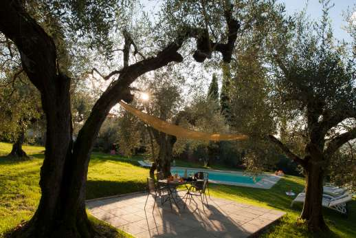 Villa Olmetto - Take in the evening sun by the pool