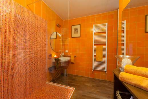 Villa Olmetto - Modern bathroom with walk in shower