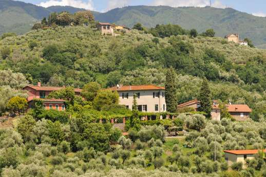 Villa le Cipressae - The villa set on a hill top, overlooking rolling woodland, vineyards and olive groves.