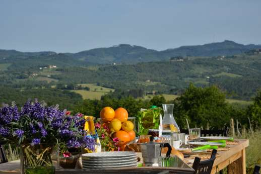 Borgo Gerlino - In the Vallambra, a little green valley at the eastern edge of the Chianti region,