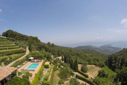 Ciclopica - Working vineyards surround the property