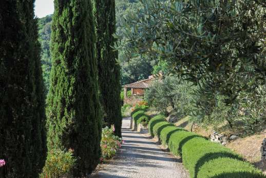 Ciclopica - The cypress lined private drive down to the villa