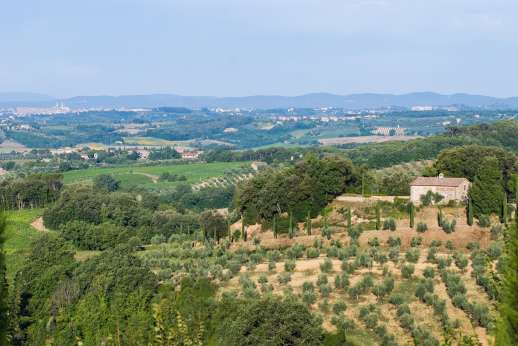 Poggio di Artemis - The villa set amongst the estate enjoys amazing views