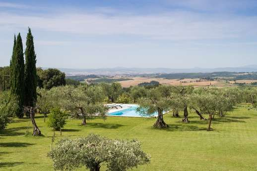 Poggio di Artemis - The private swimming pool surrounded by a olive grove, about 50 m from the house.