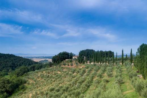 Poggio di Artemis - The many hill top towns and villages of the Chianti along with San Gimignano, Montalcino and Florence, are all within easy reach