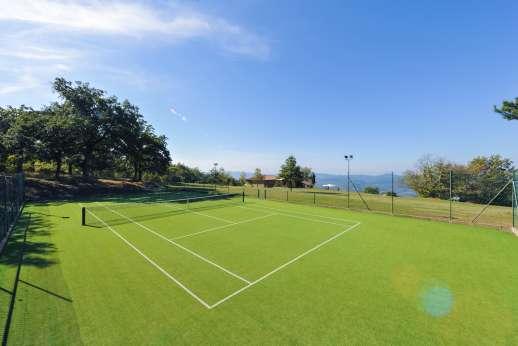 Argenta Celeste - AstroTurf tennis court.