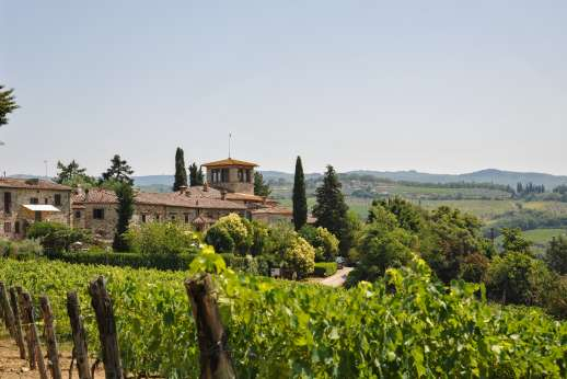 Montesassi - Set within a 20 acre wine producing estate in the heart of Chianti producing Chianti Classico and olive oil, view of the Osteria walking distance from the house.