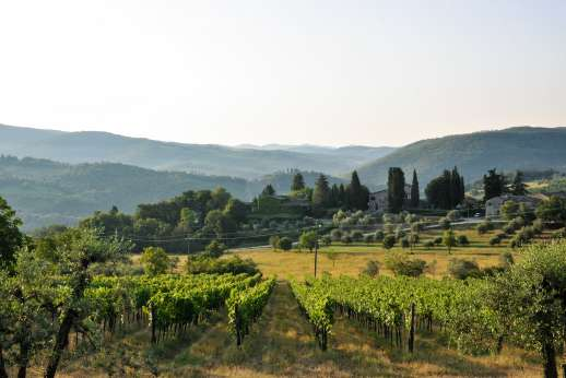 Montesassi - Views stretch over the rolling Tuscan countryside dotted with hill top villages and towns.