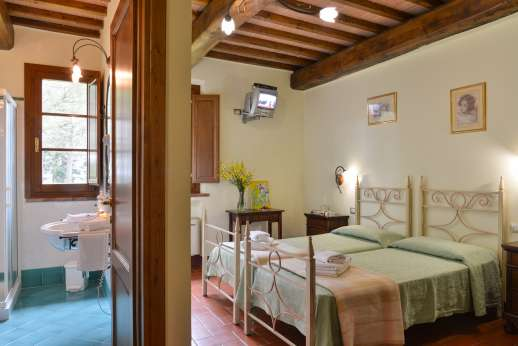 Il Renaccio (x 20 people) with Staff and Cook - Air conditioned twin bedroom with en suite bathroom.