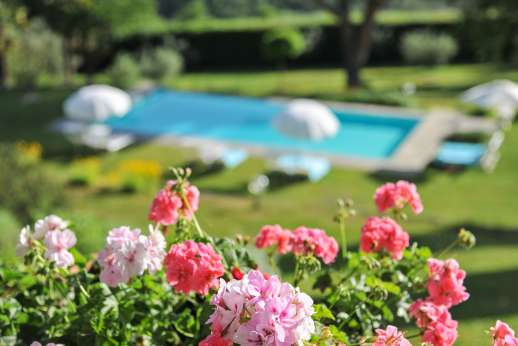 Villa di Pile - Flower beds, various fruit trees and well maintained lawns sweep down to the private infinity-edged swimming pool