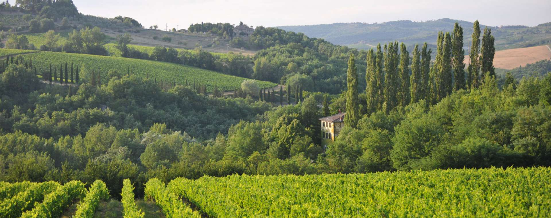 An Introduction to Tuscany